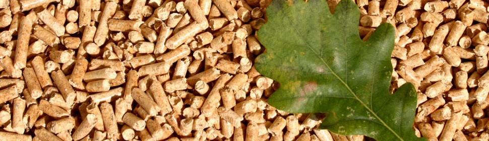 Θέρμανση με Pellet   Τα pellet είναι ένα καύσιμο αποτελούμενο από ξύλο, απαλλαγμένο από κάθε υγρασία, συμπιεσμένο σε μικρούς κυλίνδρους. Περισσότερα...